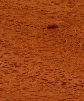 Pin knot in finished plantation mahogany